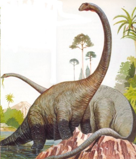 https://septianreyes.files.wordpress.com/2010/11/diplodocus1.jpg?w=255